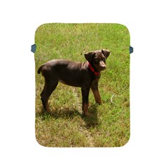 Red Doberman Puppy Apple iPad 2/3/4 Protective Soft Cases