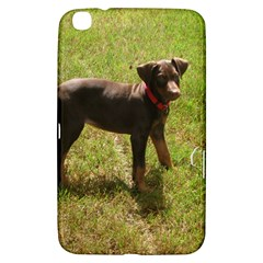 Red Doberman Puppy Samsung Galaxy Tab 3 (8 ) T3100 Hardshell Case
