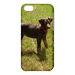 Red Doberman Puppy Apple iPhone 5C Hardshell Case