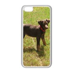 Red Doberman Puppy Apple iPhone 5C Seamless Case (White)