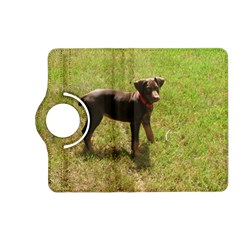 Red Doberman Puppy Kindle Fire HD (2013) Flip 360 Case