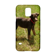 Red Doberman Puppy Samsung Galaxy S5 Hardshell Case