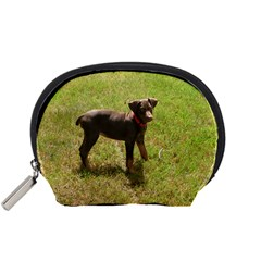 Red Doberman Puppy Accessory Pouches (Small)