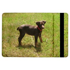 Red Doberman Puppy iPad Air Flip