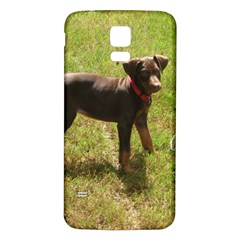 Red Doberman Puppy Samsung Galaxy S5 Back Case (White)