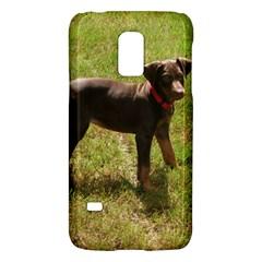 Red Doberman Puppy Galaxy S5 Mini