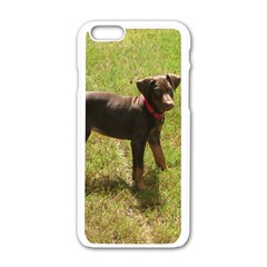 Red Doberman Puppy Apple iPhone 6/6S White Enamel Case