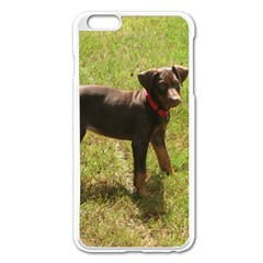 Red Doberman Puppy Apple iPhone 6 Plus/6S Plus Enamel White Case
