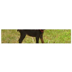 Red Doberman Puppy Flano Scarf (Small)