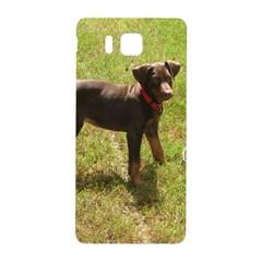 Red Doberman Puppy Samsung Galaxy Alpha Hardshell Back Case