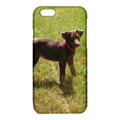 Red Doberman Puppy iPhone 6/6S TPU Case