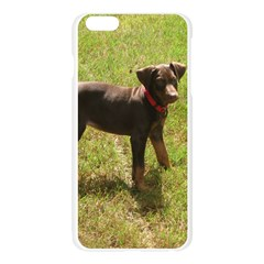 Red Doberman Puppy Apple Seamless iPhone 6 Plus/6S Plus Case (Transparent)