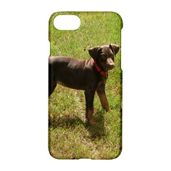 Red Doberman Puppy Apple iPhone 7 Hardshell Case