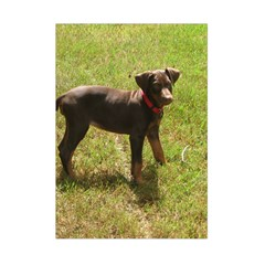 Red Doberman Puppy Small Tapestry