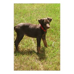 Red Doberman Puppy Large Tapestry