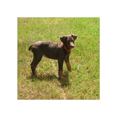 Red Doberman Puppy Square Tapestry (Small)