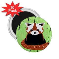 Red Panda Bamboo Firefox Animal 2.25  Magnets (10 pack)