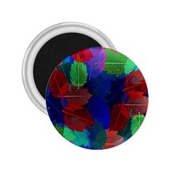Floral Flower Rainbow Color 2.25  Magnets