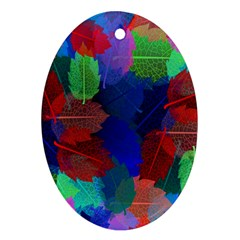 Floral Flower Rainbow Color Ornament (oval)