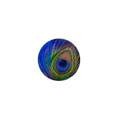 Blue Peacock Feather 1  Mini Magnets