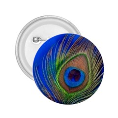Blue Peacock Feather 2 25  Buttons