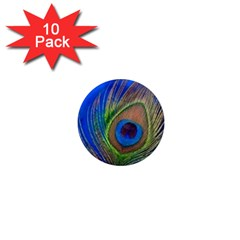 Blue Peacock Feather 1  Mini Magnet (10 pack)