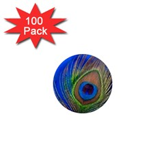 Blue Peacock Feather 1  Mini Magnets (100 pack)