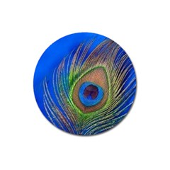 Blue Peacock Feather Magnet 3  (round)