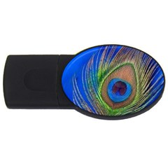 Blue Peacock Feather Usb Flash Drive Oval (4 Gb)