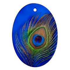 Blue Peacock Feather Oval Ornament (two Sides)