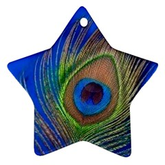 Blue Peacock Feather Star Ornament (two Sides)