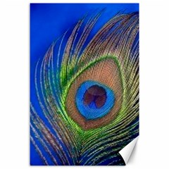 Blue Peacock Feather Canvas 24  X 36