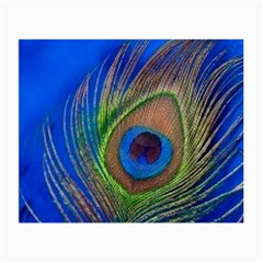 Blue Peacock Feather Small Glasses Cloth (2 Side)