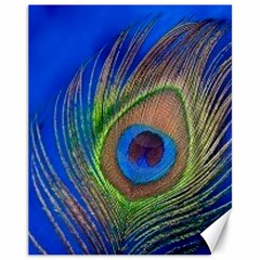 Blue Peacock Feather Canvas 11  X 14