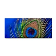 Blue Peacock Feather Cosmetic Storage Cases