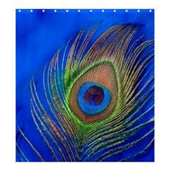 Blue Peacock Feather Shower Curtain 66  x 72  (Large)
