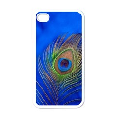 Blue Peacock Feather Apple Iphone 4 Case (white)