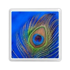 Blue Peacock Feather Memory Card Reader (square)