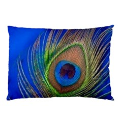 Blue Peacock Feather Pillow Case (two Sides)