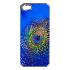 Blue Peacock Feather Apple iPhone 5 Case (Silver)