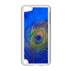 Blue Peacock Feather Apple iPod Touch 5 Case (White)