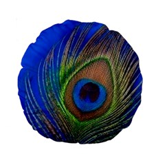 Blue Peacock Feather Standard 15  Premium Round Cushions