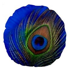Blue Peacock Feather Large 18  Premium Round Cushions