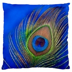 Blue Peacock Feather Standard Flano Cushion Case (one Side)