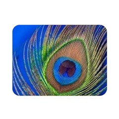 Blue Peacock Feather Double Sided Flano Blanket (Mini)