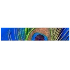 Blue Peacock Feather Flano Scarf (Large)