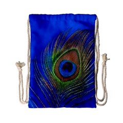 Blue Peacock Feather Drawstring Bag (Small)
