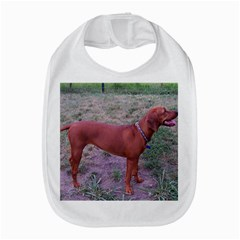Redbone Coonhound Full Amazon Fire Phone