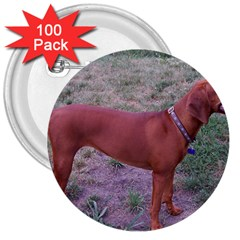 Redbone Coonhound Full 3  Buttons (100 pack)