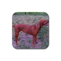 Redbone Coonhound Full Rubber Square Coaster (4 pack)